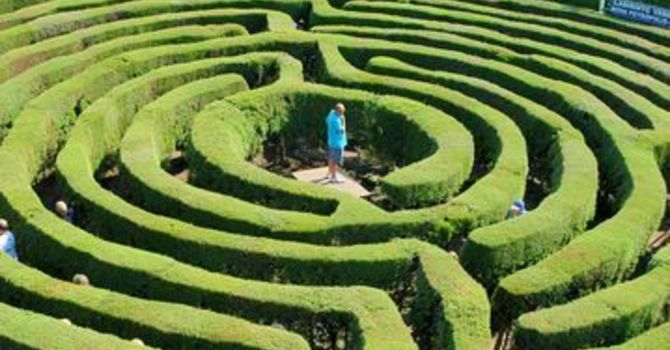 Deep in the Labyrinth