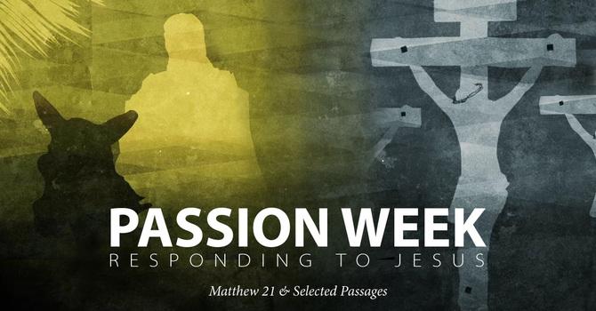 Passion Week: Responding To Jesus
