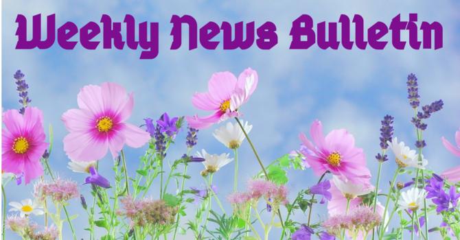 April 11th News Bulletin image