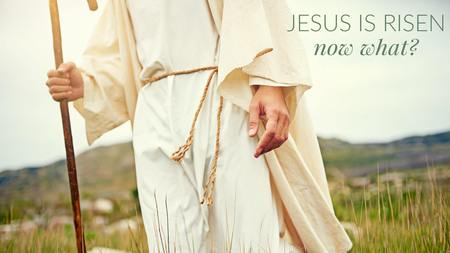 Jesus Is Risen. Now What?