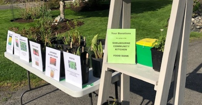 Plant Stand Fundraiser