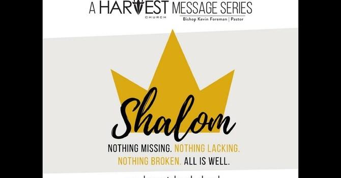 Shalom Like a Bamboo Tree