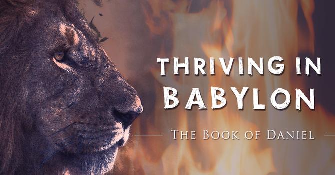 Thriving in Babylon: Part 8