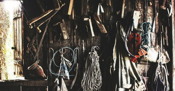 Spring cleaning: the shed image