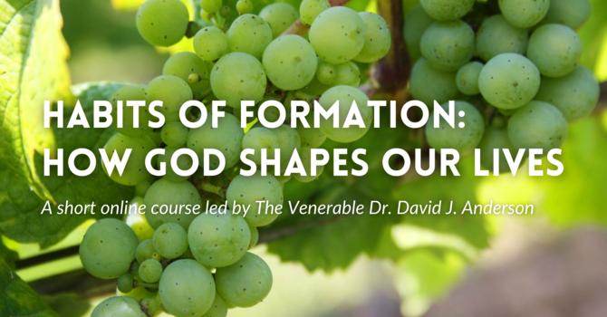 Habits of Formation: How God Shapes our Lives image