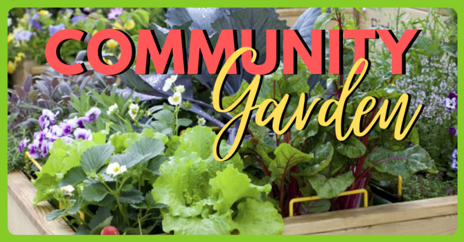 FGBC COMMUNITY GARDEN image