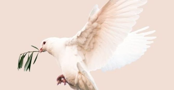The Promise of Jesus and of the Holy Spirit