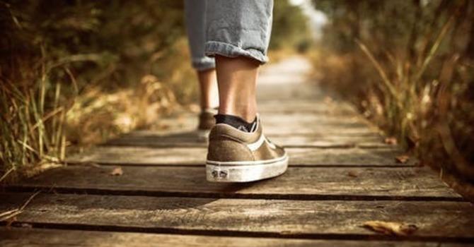 Let's Take a Walk image