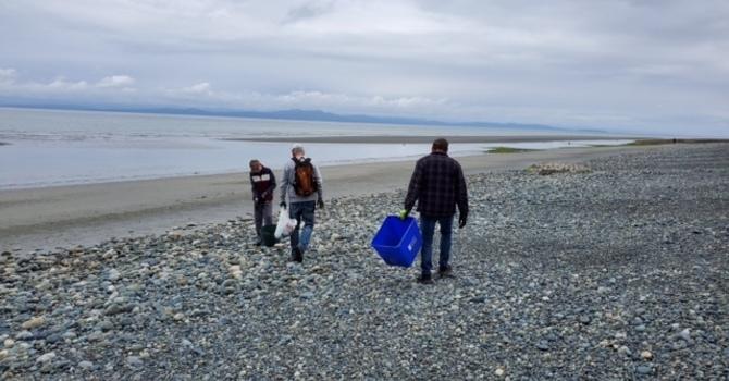 Beach Clean-up image
