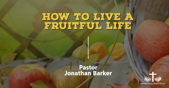 Essentials for a Fruitful Life