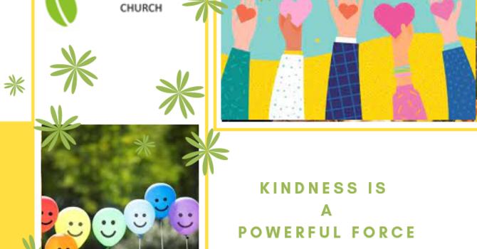Edmonton Kindness Campaign
