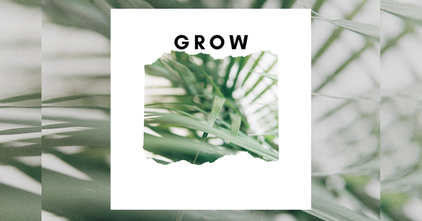 Grow Learning Sessions