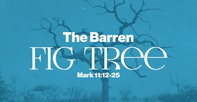 The Gospel of Mark: The Barren Fig Tree