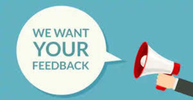 Youth Survey image