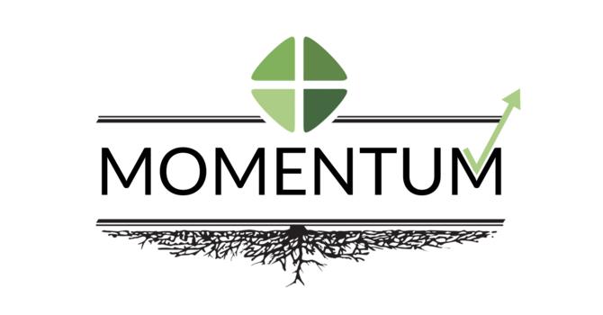 Momentum Update image