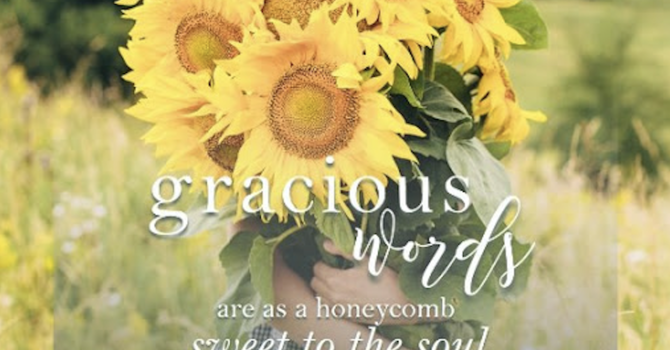 Gracious Words image