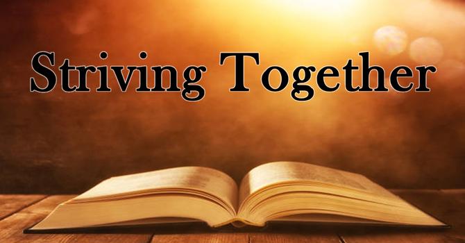 Striving Together in Relationships