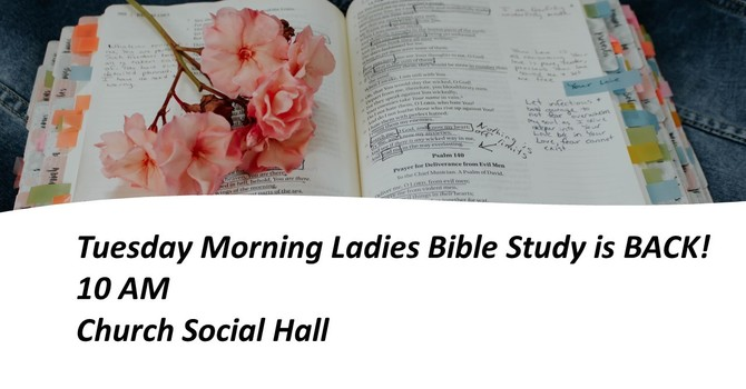 Tuesday Morning Bible Study IS BACK! image