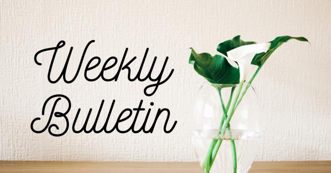 Bulletin | May 16, 2021 image