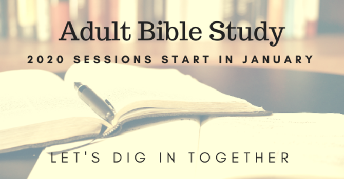 Group Bible Study (Bi-weekly)
