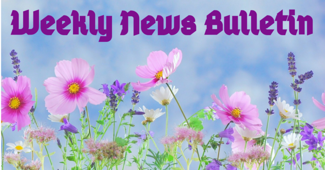 May 16th News Bulletin image