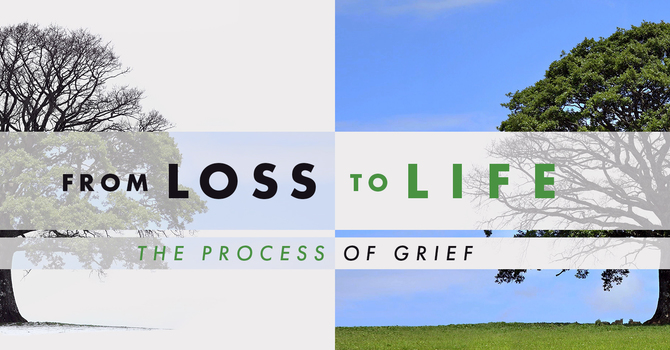 From Loss to Life