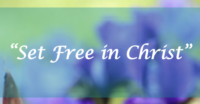 Set Free in Christ
