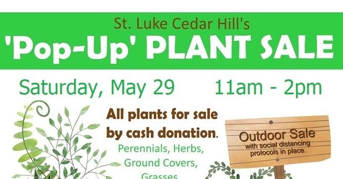 Plant Sale Update image