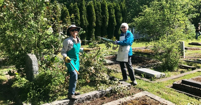 Helping our neighbours at St. Stephen's Anglican Church image