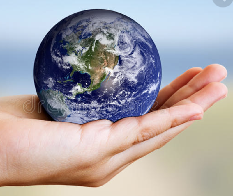 """""""Caring for Our Earth"""""""