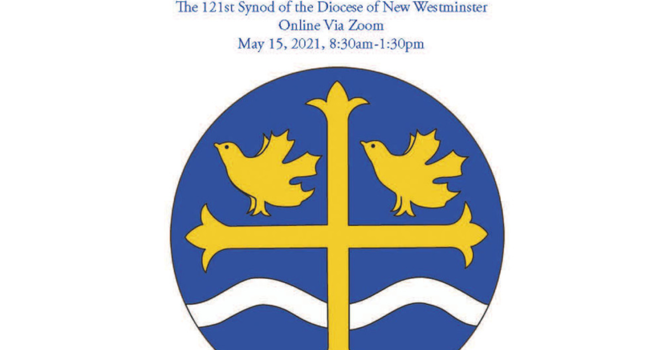 Synod report 2021 image