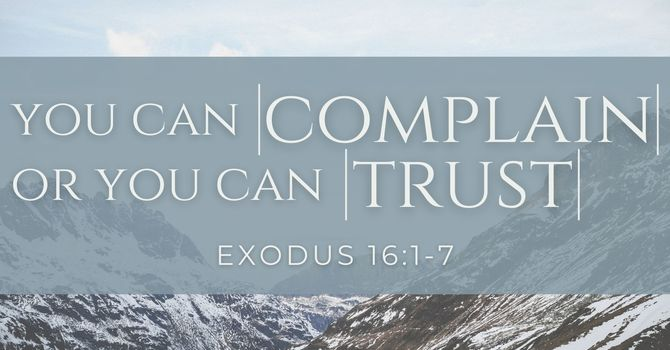 You Can Complain or You Can Trust