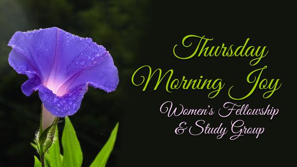 Thursday Morning Joy