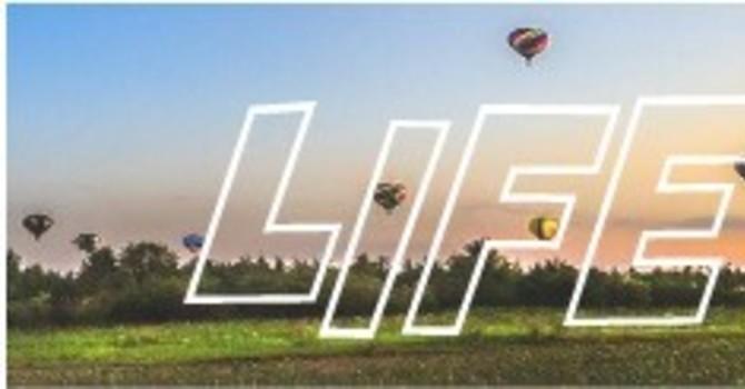 June 2021 Lifewire image