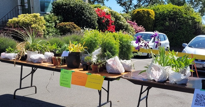 Thanks to Everyone Who Helped with the Plant Sale image