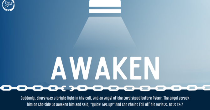 Ps David Hall - Awaken Night