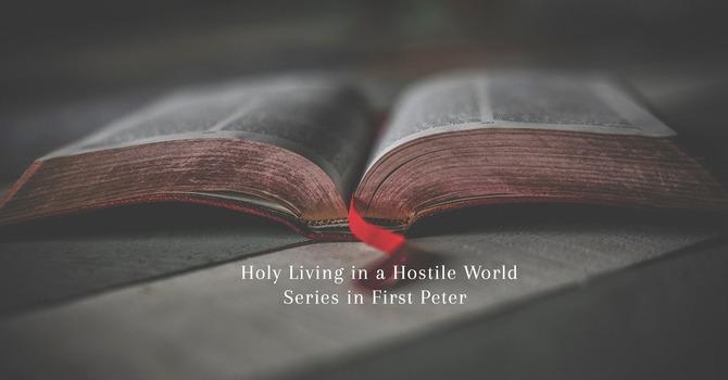 Holy Purpose in Hostile Pain