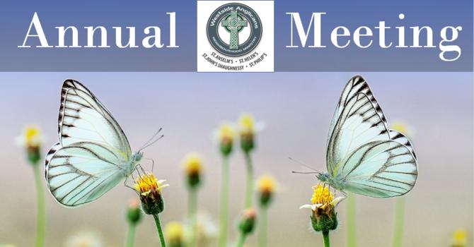 Neighborhood Ministry Zoom Annual Meeting