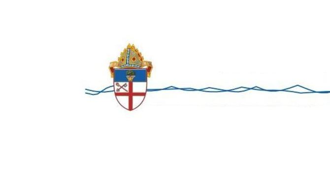 Statement from the Bishop of Ottawa - image