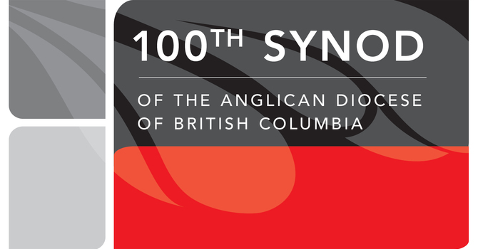 Bishop's charge to synod 100