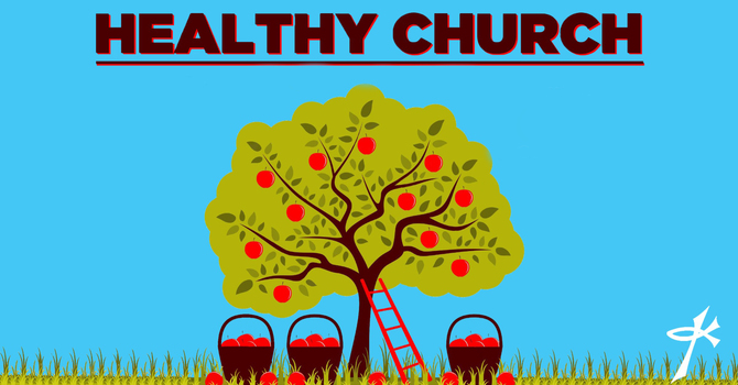Healthy Churches Build Upon the Right Foundation