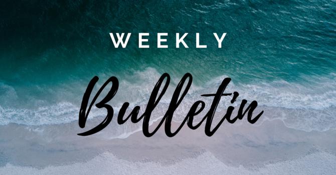 Bulletin | June 6, 2021 image