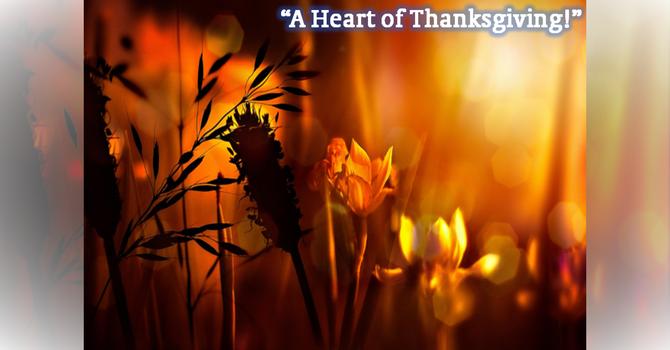 A Heart of Thanksgiving!