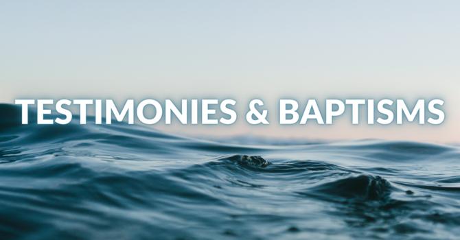 Testimonies & Baptisms from June 5 image