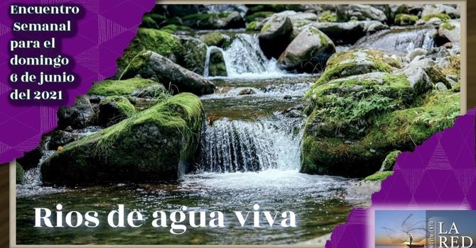 Ríos de Agua Viva