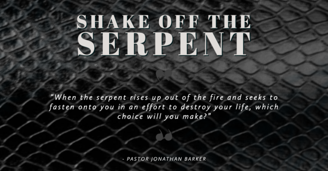 Shake Off the Serpent image