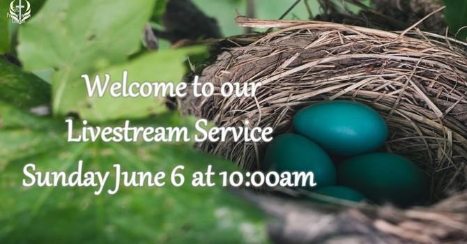 Sunday June 6 Livestream Service