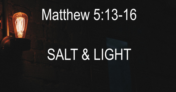 The Salt and The Light