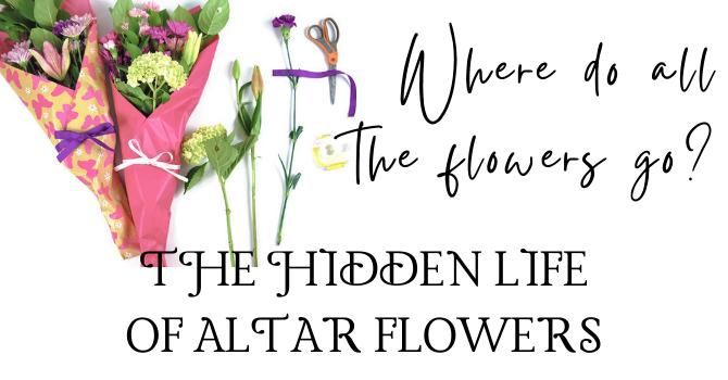 Where do all the flowers go? image