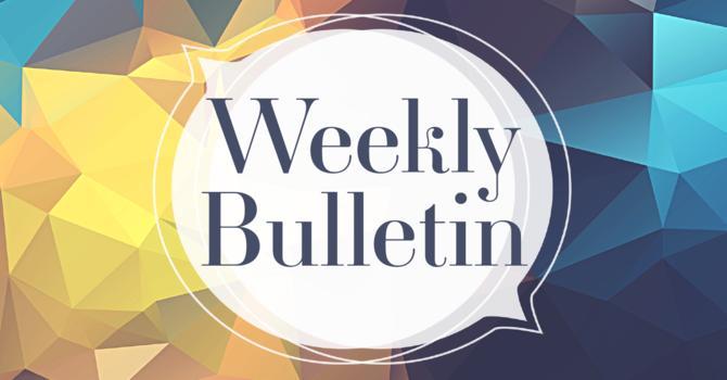 Bulletin for Sunday June 13th, 2021 image